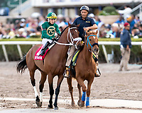 HALLANDALE BEACH, FL - FEB 3:Speed Franco #1 trained by Gustavo Delgado with Emisael Jaramillo in the irons prepares to run and win the $100,000 Dania Beach Stakes (G3) at Gulfstream Park on February 3, 2018 in Hallandale Beach, Florida. (Photo by Bob Aaron/Eclipse Sportswire/Getty Images)