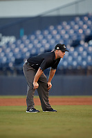 Umpire Brandon Blome during a Florida State League game between the St. Lucie Mets and Tampa Tarpons on April 10, 2019 at George M. Steinbrenner Field in Tampa, Florida.  St. Lucie defeated Tampa 4-3.  (Mike Janes/Four Seam Images)