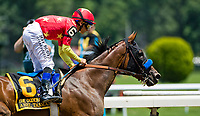 ELMONT, NY - JUNE 09: Mike Smith celebrates after winning the Ogden Phipps Stakes on Belmont Stakes Day at Belmont Park on June 9, 2018 in Elmont, New York. (Photo by Eric Patterson/Eclipse Sportswire/Getty Images)
