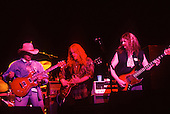 THE ALLMAN BROTHERS BAND 1994 WILLIAM HAMES ATLASICONS
