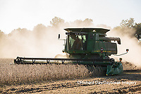 63801-07318 Soybean harvest with John Deere combine in Marion Co. IL