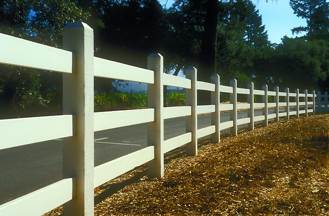 Fence along Sulpher Springs in St. Helena