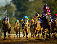 ARCADIA, CA - OCTOBER 06: Heavenly Love #9, ridden by Julien Leparoux wins the Darley Alcibiades at Keeneland Race Course on October 06, 2017 in Lexington, Kentucky. (Photo by Alex Evers/Eclipse Sportswire/Getty Images)