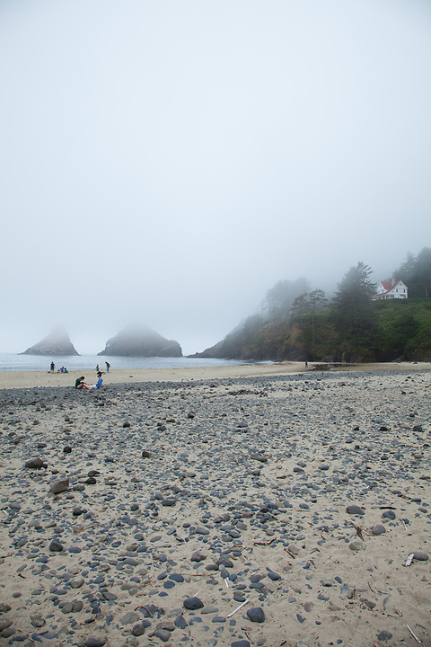 beach scenes and tide pools at Heceta Head beach, on the Oregon Coast, photographed at low tide on a foggy day