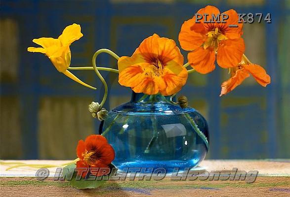 Marek, FLOWERS, BLUMEN, FLORES, photos+++++,PLMPK874,#f#