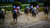 BALTIMORE, MD - MAY 19: The field comes down the final stretch during the Black Eye Susan Stakes, in which Actress #10 (black hat), ridden by Nik Juarez wins the Black Eyes Susan Stakes, on Black-Eyed Susan Day at Pimlico Race Course on May 19, 2017 in Baltimore, Maryland.(Photo by Douglas DeFelice/Eclipse Sportswire/Getty Images)