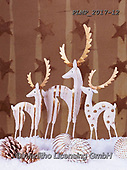 Marek, CHRISTMAS SYMBOLS, WEIHNACHTEN SYMBOLE, NAVIDAD SÍMBOLOS, photos+++++,PLMP2017-12,#xx# ,reindeers