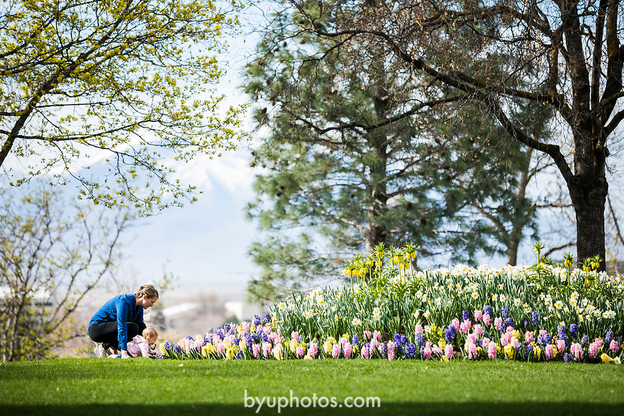 1704-10 GCS Spring 0046<br /> <br /> 1704-10 GCS Spring<br /> <br /> April 6, 2017<br /> <br /> Photography by Nate Edwards/BYU<br /> <br /> © BYU PHOTO 2016<br /> All Rights Reserved<br /> photo@byu.edu  (801)422-7322