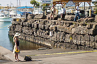 NOAA government officials putting tapes for Hawaiian monk seal, Monachus schauinslandi, basking at boat ramp, young male, critically endangered species, Honokohau Harbor, Kona Coast, Big Island, Hawaii, USA, Pacific Ocean