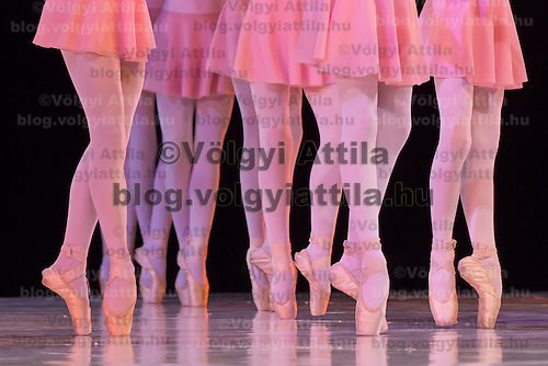 Second year students of the Hungarian Dance Academy perform in Etude choreographed by Monika Barna, music by Zsuzsa Gabor during a gala performance held at the National Dance Theatre in Budapest, Hungary on February 27, 2013. ATTILA VOLGYI