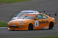 Round 4 of the 2002 British Touring Car Championship. #8 Tim Harvey (GBR). Team Halfords. Peugeot 406 Coupé.