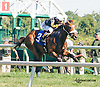 Pontius P winning at Delaware Park on 9/23/15