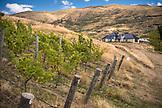 NEW ZEALAND, Wanaka, Rippon Winery outside Wanaka,  Ben M Thomas