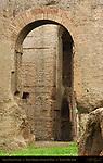 Site of Curiae Veteris Domus Tiberiana Retaining Walls Palatine Hill Rome