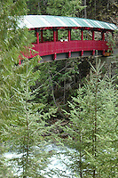Footbridge on beautiful River Trail. Kaslo, British Columbia.