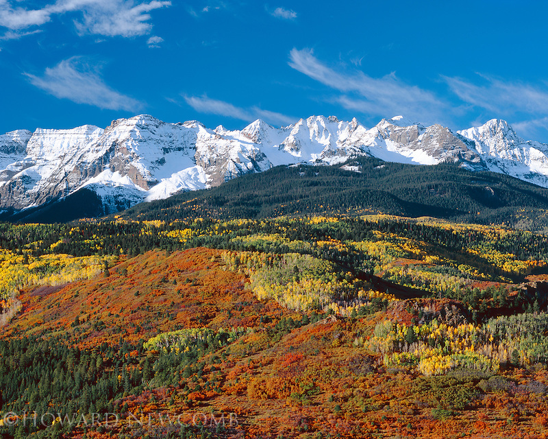 An explosion of colors: aspens, scrub oak on the Sneffels Range in the San Juan Mountains near Telluride, Coloradol