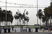 SANTA MONICA-ESTADOS UNIDOS. The Ocean Avenue de Santa Monica son unos de los atractivos turisticos de esta ciudad del condado de Los Angeles.  Photo: VizzorImage