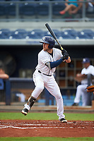 Charlotte Stone Crabs catcher Brett Sullivan (8) at bat during the first game of a doubleheader against the Tampa Yankees on July 18, 2017 at Charlotte Sports Park in Port Charlotte, Florida.  Charlotte defeated Tampa 7-0 in a game that was originally started on June 29th but called to inclement weather.  (Mike Janes/Four Seam Images)