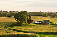 Rural scene with barn and field.