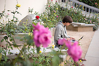 Kade Cheatham '18 studies in Dr. O's Garden on Dec. 1, 2015.<br /> (Photo by Marc Campos, Occidental College Photographer)