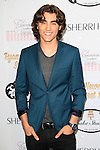 LOS ANGELES - APR 27: Blake Michael at Ryan Newman's Glitz and Glam Sweet 16 birthday party at the Emerson Theater on April 27, 2014 in Los Angeles, California