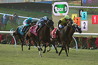DEL MAR, CA  JULY 16:#8 She's Not Here ridden by jockey Drayden Van Dyke, #1 Fresh Feline and Victor Espinoza,#9 Keri Belle and Gary Stevens, in the stretch of the  Yellow Ribbon Handicap (GII) at Del Mar Turf Club in Del Mar, CA on July 16, 2016 (Photo by Casey Phillips/Eclipse Sportswire/Getty ImagesDEL MAR, CA  JULY 16: (Photo by Casey Phillips/Eclipse Sportswire/Getty Images