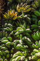 France, île de la Réunion, Saint Paul, marché hebdomadaire de Saint Paul,   Bananes-mignonnes//  France, Ile de la Reunion (French overseas department), weekly open market of Saint Paul, Banana fig