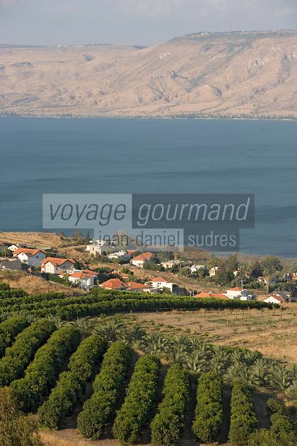 Asie/Israël/Galilée/Tibériade: Cultures sur les bords du lac de Tibériade et en fond les monts du Golan