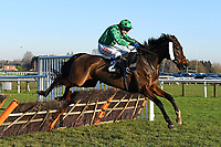 Winner of The Tysers Mares' Handicap Hurdle Miss Tynte ridden by Tom Scudamore and trained by David Pipeduring Horse Racing at Plumpton Racecourse on 2nd December 2019