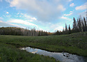 Scenery at Blewett Pass, in the Wenatchee Mountains, pond in a meadow. Stock photography by Olympic Photo Group