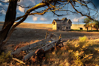 Abandoned farm house and wagon. Near The Dalles, Oregon