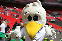 AFC Fylde mascot during the Vanarama National League Playoff Final between AFC Fylde & Salford City at Wembley Stadium, London, England on 11 May 2019. Photo by James  Gil.