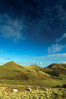 West Kip, East Kip and Scald Law from Cap Law, The Pentland Hills, The Pentland Hills Regional Park, Lothian