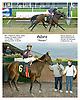 Adare winning at Delaware Park on 9/30/09
