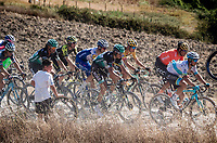 the main peloton with some favorites in front<br /> <br /> 14th Strade Bianche 2020<br /> Siena > Siena: 184km (ITALY)<br /> <br /> delayed 2020 (summer!) edition because of the Covid19 pandemic > 1st post-Covid19 World Tour race after all races worldwide were cancelled in march 2020 by the UCI