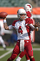 TIM HASSELBECK, of the Arizona Cardinals, in action during their game against the Cincinnati Bengals on November 18, 2007 in Cincinnati, Ohio...Cardinals win 35-27..SportPics