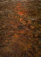 Firewater, Tuolumne River