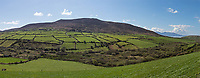 Bright green fields and pastures welcome visitors to the Dingle Peninsula.