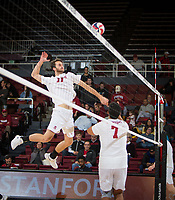 STANFORD, CA - January 17, 2019: Chris Moore, Mason Tufuga at Maples Pavilion. The Stanford Cardinal defeated UC Irvine 27-25, 17-25, 25-22, and 27-25.