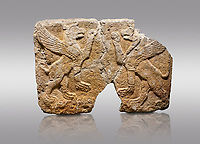 Picture &amp; image of Hittite monumental relief sculpted orthostat stone panel Orthostats of a Procession. Limestone, Karkamıs, (Kargamıs), Carchemish (Karkemish), 900 700 BC. Griffin. Anatolian Civilisations Museum. Ankara. Bird - headed lions standing opposite on their hind legs (griffin). It is symmetric. <br /> <br /> Against a gray background.