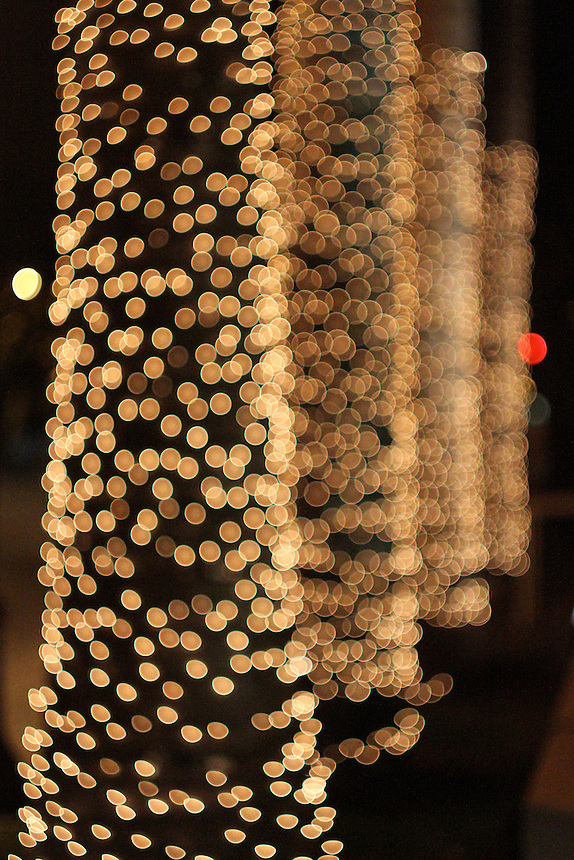 holiday lights wrapped around palm trees in Miami