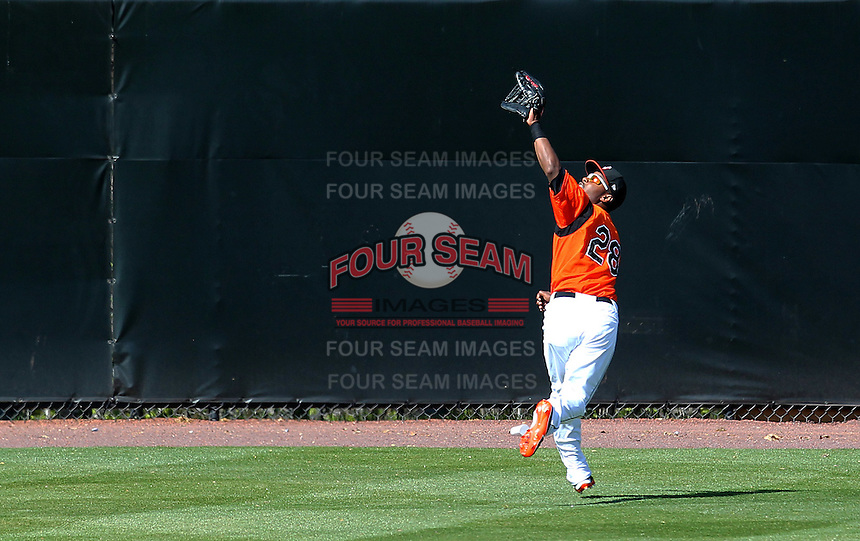 Bowie BaySox outfielder L.J. Hoes #28 tracks down a fly ball during a game against the Harrisburg Senators at Prince George's Stadium on April 8, 2012 in Bowie, Maryland.  Harrisburg defeated Bowie 5-2.  (Mike Janes/Four Seam Images)