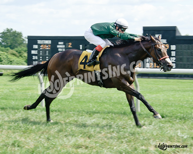 Fudge E winning at Delaware Park on 9/10/14