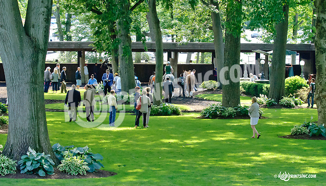 Paddock before The Obeah Stakes (gr 3) at Delaware Park racetrack on 6/14/14