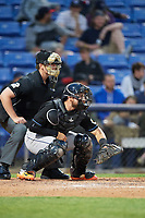 Umpire Richard Riley and Akron RubberDucks catcher Eric Haase (13) during a game against the Binghamton Rumble Ponies on May 12, 2017 at NYSEG Stadium in Binghamton, New York.  Akron defeated Binghamton 5-1.  (Mike Janes/Four Seam Images)