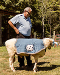 July 31, 2017. Chapel Hill, North Carolina.<br /> <br /> Don Basnight stands with Rameses the Ram outside his barn. <br /> <br /> Basnight is one of the members of the Hogan family who have long been the caretakers of Rameses the Ram. The current Rameses is the 21st in the line of the University of North Carolina's live mascot.