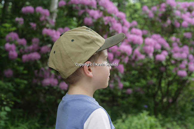 Boy with hat looking at natural scene with trees and flowers..
