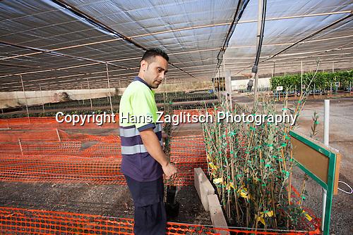 Gartenzentrum, Versuchsfarm Granja Experimental, Pozo Negro, Fuerteventura