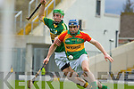 James Godley Kerry and Paudie Kehoe Carlow in action during their Allianz Hurling league clash in Fitzgerald Stadium on Sunday