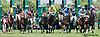 Vianney Lane winning at Delaware Park  on 5/25/15